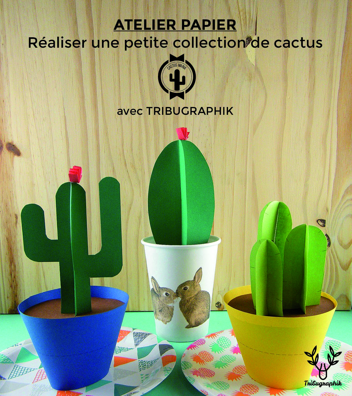 tribugraphik-atelier-cactus-1